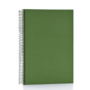 Spiral album Linum A4 - 921 light green